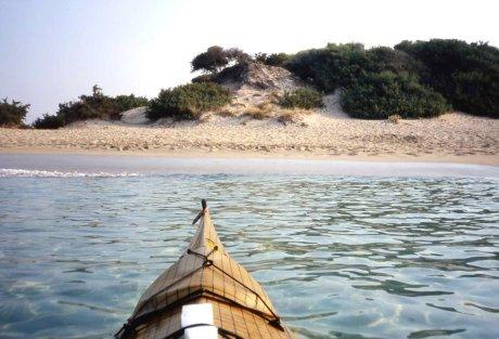 la spiaggia selvaggia a sud di Punta Prosciutto