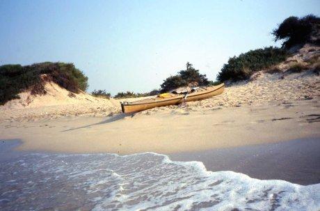 Spiaggia a sud di Punta Prosciutto