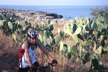 in bici tra i fichi d'india nella zona di Lu Rinaro