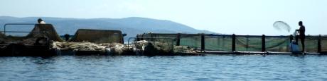 A - Arcipelago di Echinades (32p)