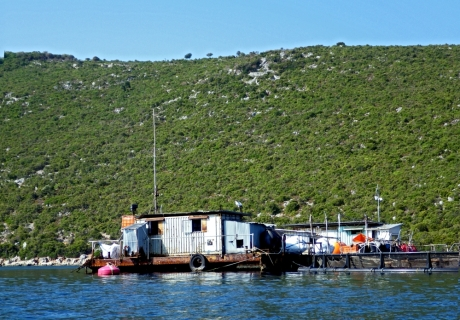 A - Arcipelago di Echinades (4p)