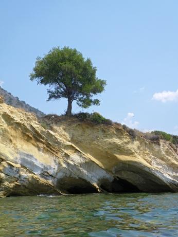 Gp - Costa a Sud di Agrilia (12)
