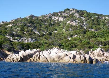 Scogliere e vegetazione di Punta Molara