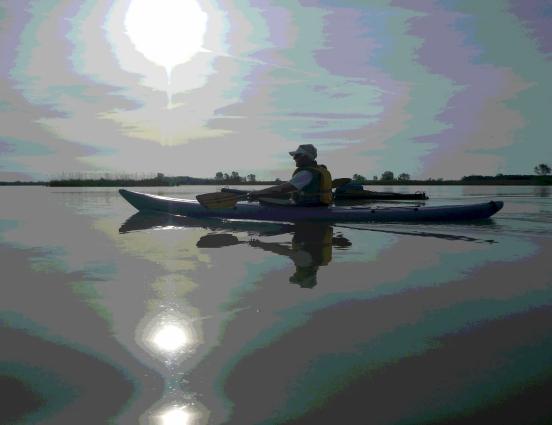 Stefano ci guida nella Laguna degli Allagamenti Sud