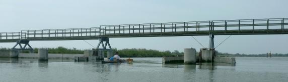 La chiusa (trovata aperta) del Canale che va dal Po di Goro alla Sacca di Goro (a nord del faro)