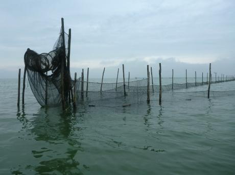 Reti da pesca nella Sacca di Scardovari