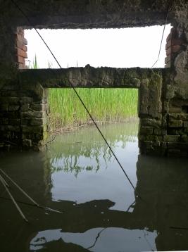 Tenuta Daccò in Laguna degli Allagamenti