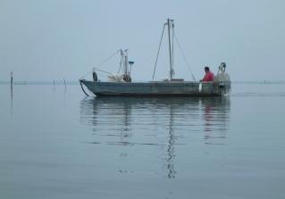 Nel mezzo della Sacca di Goro, Barca per vongole.