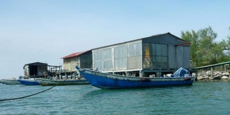 barca e cavane di Scardovari