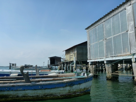 barche e cavane di Scardovari