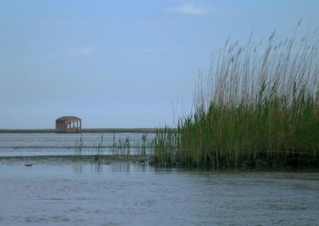Canale dalla Bottonera al Po di Gnocca - e la sacca della Bottonera in bassa marea