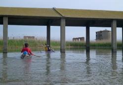 Tenuta Daccò in laguna degli Allagamenti Sud